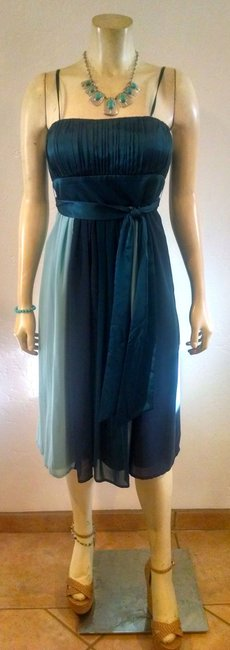 Max and Cleo P621 & Size 4 Silk Dress