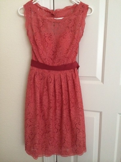 Encore Coral Lace Feminine Dress Size 6 (S)