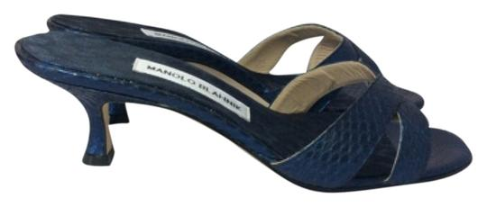 Manolo Blahnik Blue/Black Sandals Image 1