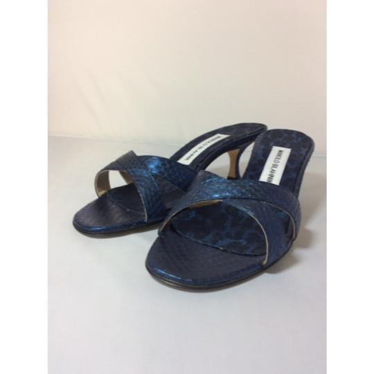 Manolo Blahnik Blue/Black Sandals Image 3