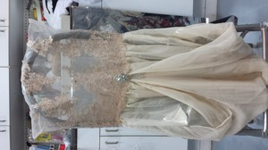 Champagne Lace Top Champagne Chiffon Bottom With Brooch