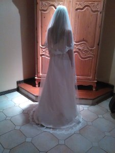 Chapel Length Veil With Lace And Pearls