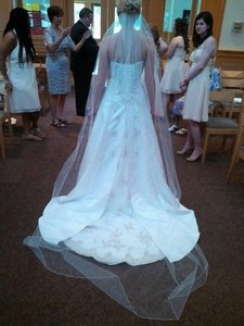 David's Bridal Cathedral Length Veil