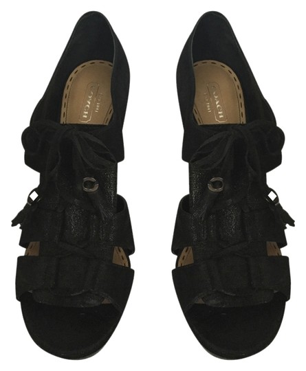 Preload https://img-static.tradesy.com/item/10434763/coach-black-teagan-shimmer-leather-pumps-size-us-10-regular-m-b-0-1-540-540.jpg