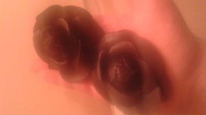 Other pair of leather brooches
