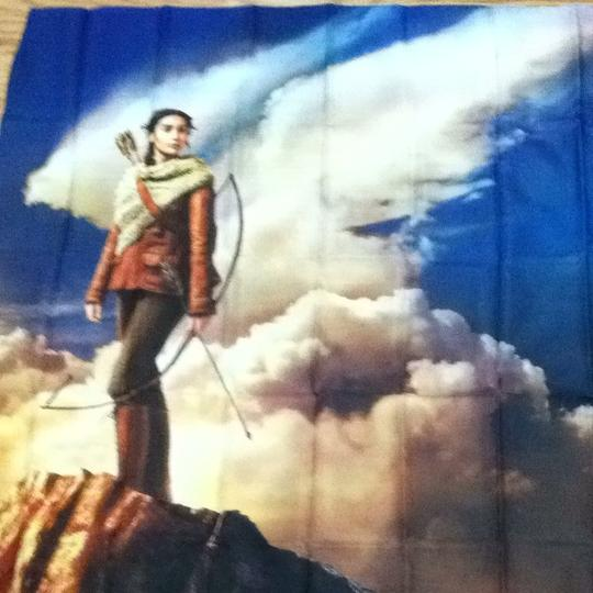 Lionsgate Hunger Games Fabric Poster