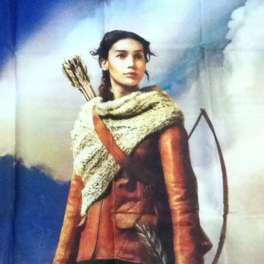 Lionsgate Hunger Games Fabric Poster Image 6