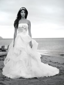 Vera Wang Giselle Wedding Dress