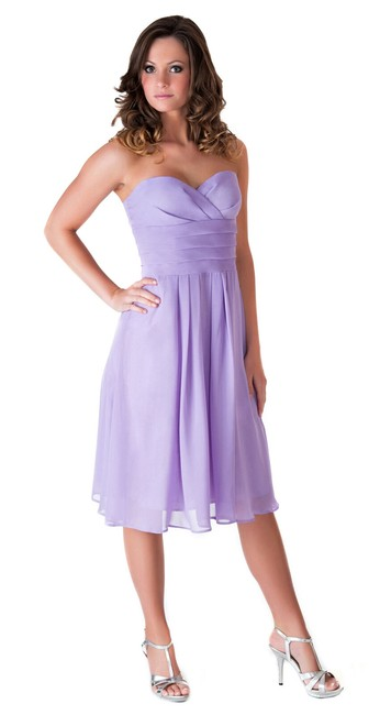 Purple Strapless Pleated Waist Slimming Chiffon Mid-length Formal Dress Size 22 (Plus 2x) Purple Strapless Pleated Waist Slimming Chiffon Mid-length Formal Dress Size 22 (Plus 2x) Image 1