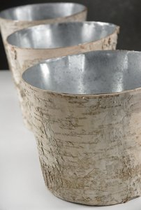 Birch Centerpiece Vases