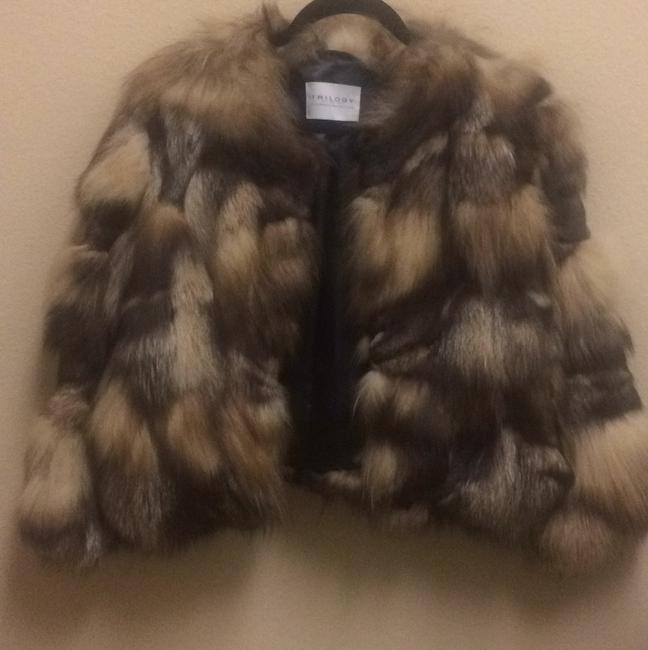 Preload https://img-static.tradesy.com/item/10579975/caramel-brown-and-black-dyed-fox-fur-coat-size-12-l-0-0-650-650.jpg