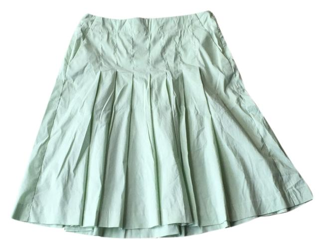 Preload https://item3.tradesy.com/images/theory-green-and-white-knee-length-skirt-size-0-xs-25-10598797-0-1.jpg?width=400&height=650