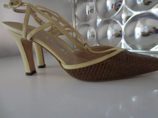 Manolo Blahnik Brown/Tan Pumps