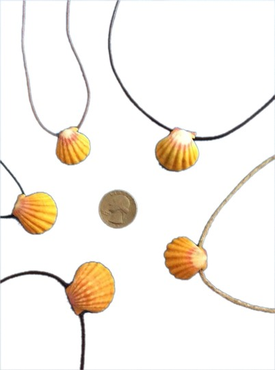 Other Sunrise Shell Necklaces