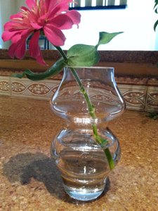 Crate & Barrel Clear And Belle Bud Vases - Qty 12 Centerpiece