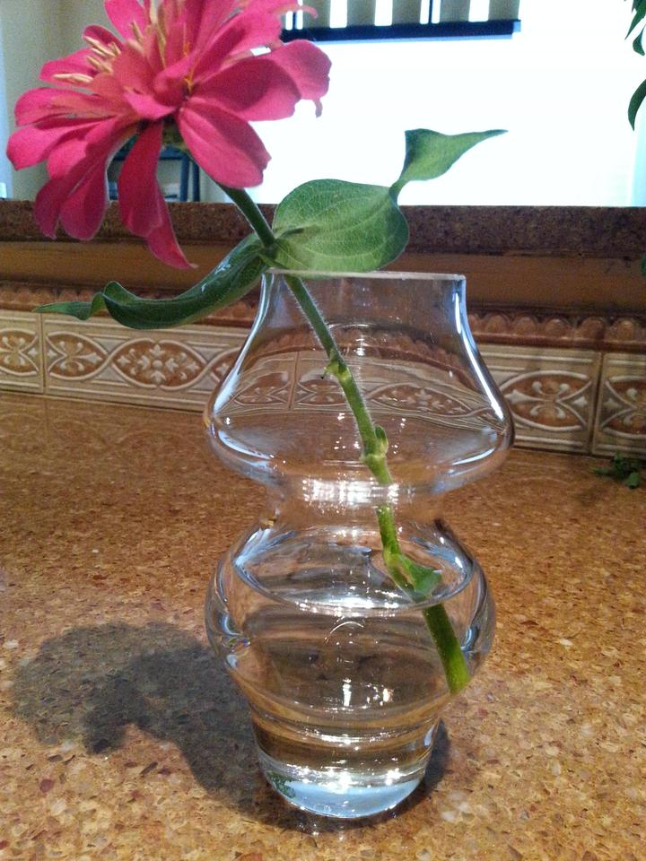 Crate Barrel Clear And Belle Bud Vases Qty 12 Centerpiece Tradesy
