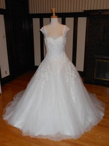 Pronovias Off White Lace Daren Destination Wedding Dress Size 12 (L)