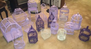 Birdcages (all Shown)