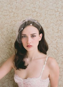 BHLDN Ivory Birdcage Twigs and Honey Mini Bridal Veil