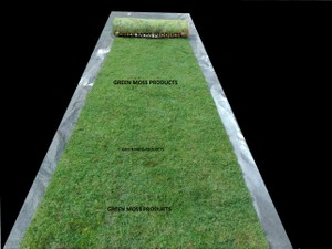 2'x20' Real Moss Runner Rustic Display Arches Chic Chargers Setting Table Display Church Ceremony Centerpieces Outdoor