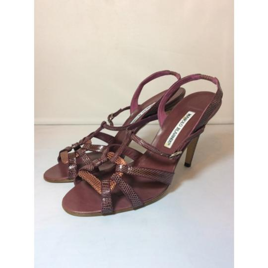 Manolo Blahnik Berry Sandals Image 3