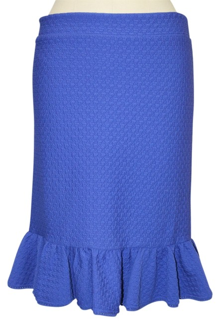Preload https://item2.tradesy.com/images/anthropologie-blue-stretch-ruffled-small-knee-length-skirt-size-4-s-27-1137391-0-0.jpg?width=400&height=650
