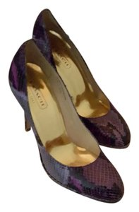 Coach purple Pumps