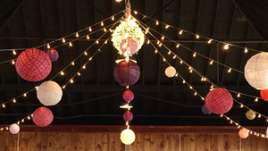 Gorgeous Paper Lanterns In Pinks Golds Fuschia Oranges And More!