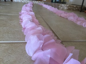 25ft Pink Aisle Runner Border