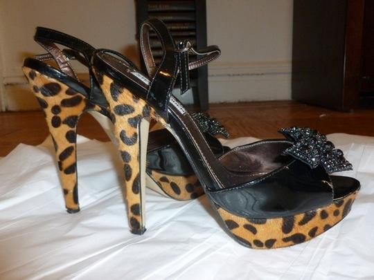 Steve Madden Leather Leopard Sequin Bow Heels Party Statement Piece Black/Leopard Pumps