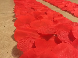 50ft Red Aisle Runner Border
