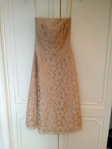 White House | Black Market Champagne Lace and Satin Formal Bridesmaid/Mob Dress Size 0 (XS)