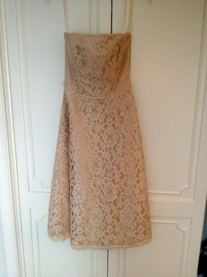 White House | Black Market Champagne Lace and Satin Formal Dress Size 0 (XS)