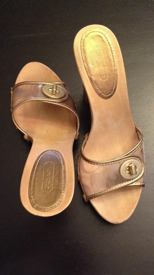 Coach bronze/clear Mules