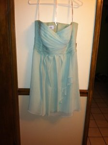 David's Bridal Mint F14847 Dress