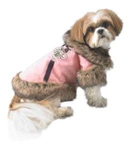 Juicy Couture Small/medium dogs