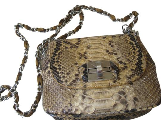 Preload https://item1.tradesy.com/images/paolo-bentini-cross-body-bag-brown-1232380-0-0.jpg?width=440&height=440