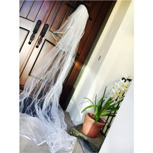 Monique Lhuillier Veil