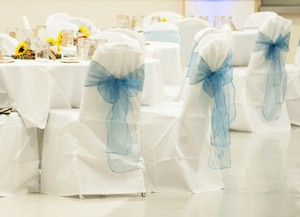 Chair Covers Used Once- Good Condition