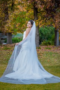 Zveil Cathedral Length Veil Simple Classic Tulle