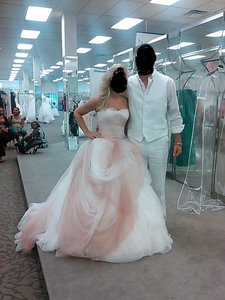 Vera Wang Ivory/Blush Ombre Tulle Gown Ivory/Blush Formal Wedding Dress Size 8 (M)