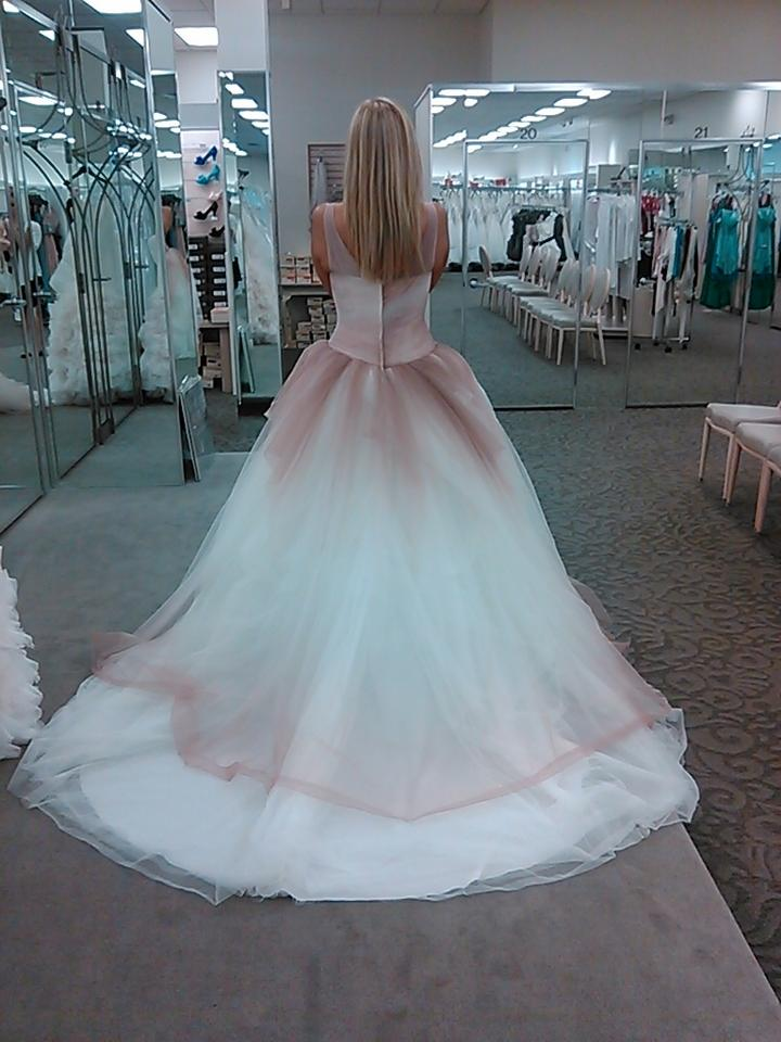 Vera Wang Tulle Ombre ...