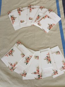 BHLDN Rose Wildflowers Hothouse Foliage Place Cards Other