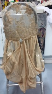 1 Gold Lace Top Gold Chiffon Bottom With Brooch