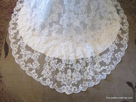 Private Label by G Champagne/White Lace/Satin Style 1584 Vintage Wedding Dress Size 16 (XL, Plus 0x) Image 1