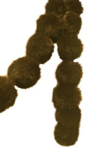 Unknown Faux Fur dark Brown fur scarve