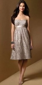 Alfred Angelo Cafe Lace 7012 Formal Bridesmaid/Mob Dress Size 8 (M)