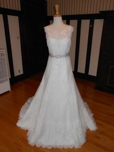Pronovias Off White Lace Amman Destination Wedding Dress Size 4 (S)
