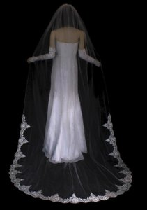 Bella Tiara Lace Trim Cathedral Veil