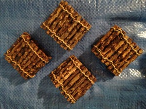 Pier 1 Imports Wood Stick Napkin Holders